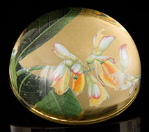 Scott Potter Ginger Blossom Domed Paperweight