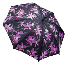 Orchids Umbrella