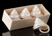 White Undasa Shell Napkin Rings
