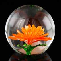 Tangerine Chrysanthemum Paperweight